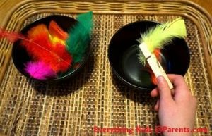 Feather trnsfer