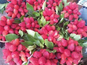 Mahableshwar Strawberries