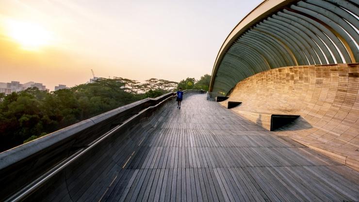 Henderson bridge singapore