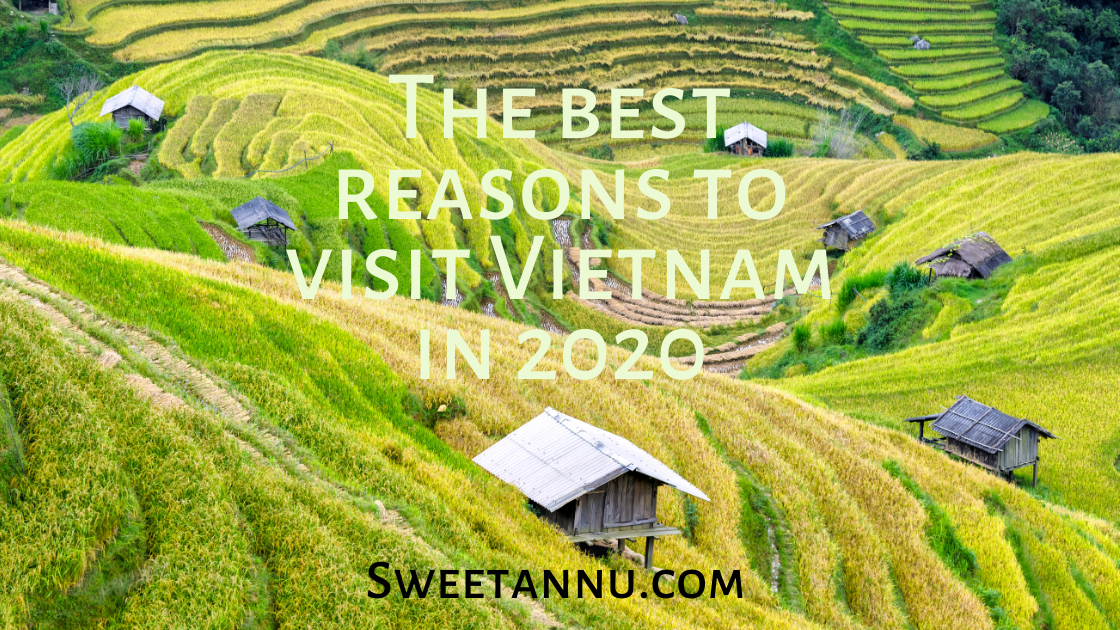 Best reasons to visit Vietnam in 2020